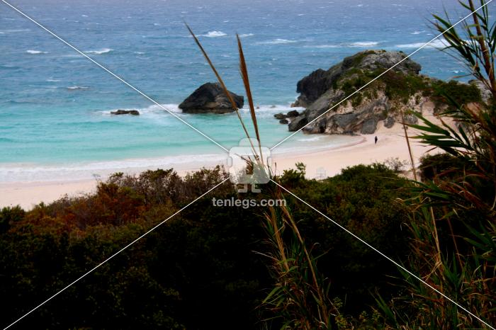 Bermuda, British territory, North Atlantic Ocean by Surbhee Grover | Visual | Tenlegs